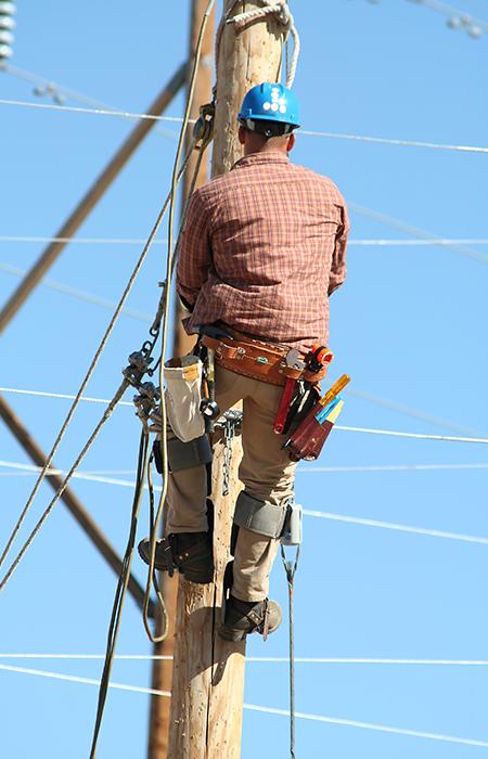 Line Worker 3